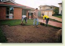 laying_the_new_turf_lawn